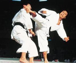 Rapina Karate