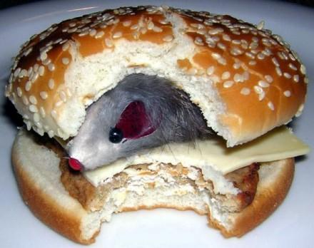 Topo Hamburger
