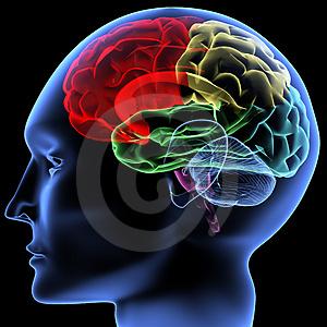 Le incredibili potenzialità della nostra mente