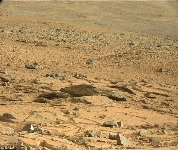 Lucertola su Marte
