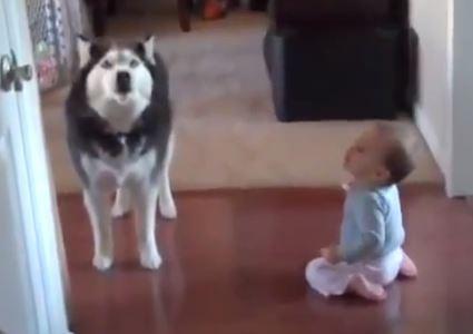 Neonato parla con cane