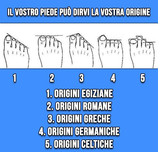 Origine forma dei piedi