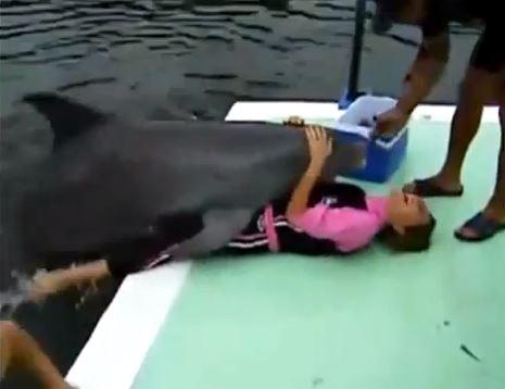 Delfino donna