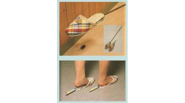 Pantofole anti scarafaggi