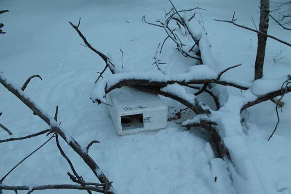 Scatola trovata sulla neve