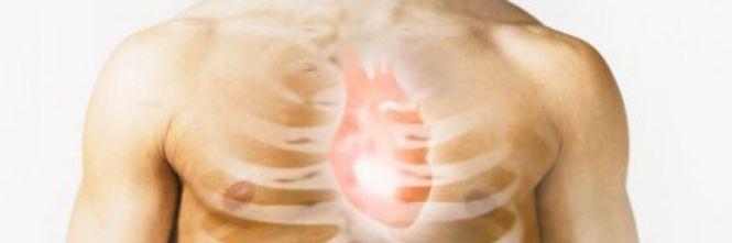Proteina rigenera il cuore
