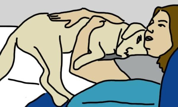 Linguaggio cani