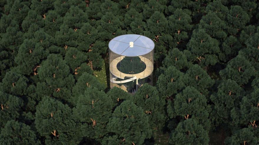 Casa di vetro intorno all'albero