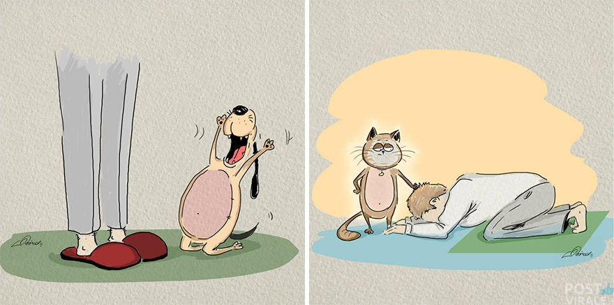 cats-vs-dogs-funny-illustrations-bird-born-6
