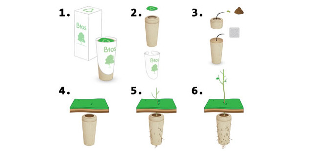 2014-09-26-biodegradable-urns-turn-you-into-tree-after-you-die-fb2