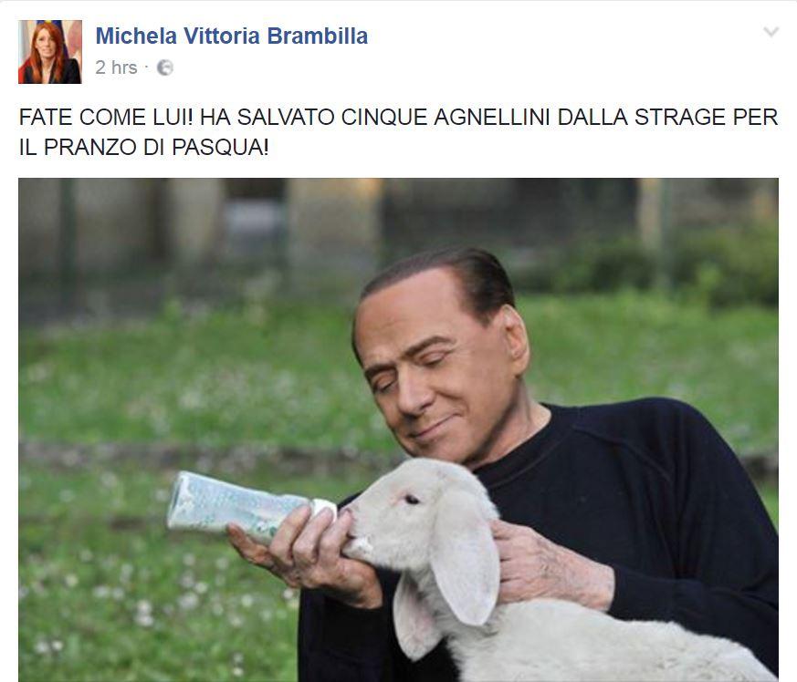 Berlusconi Agnellini